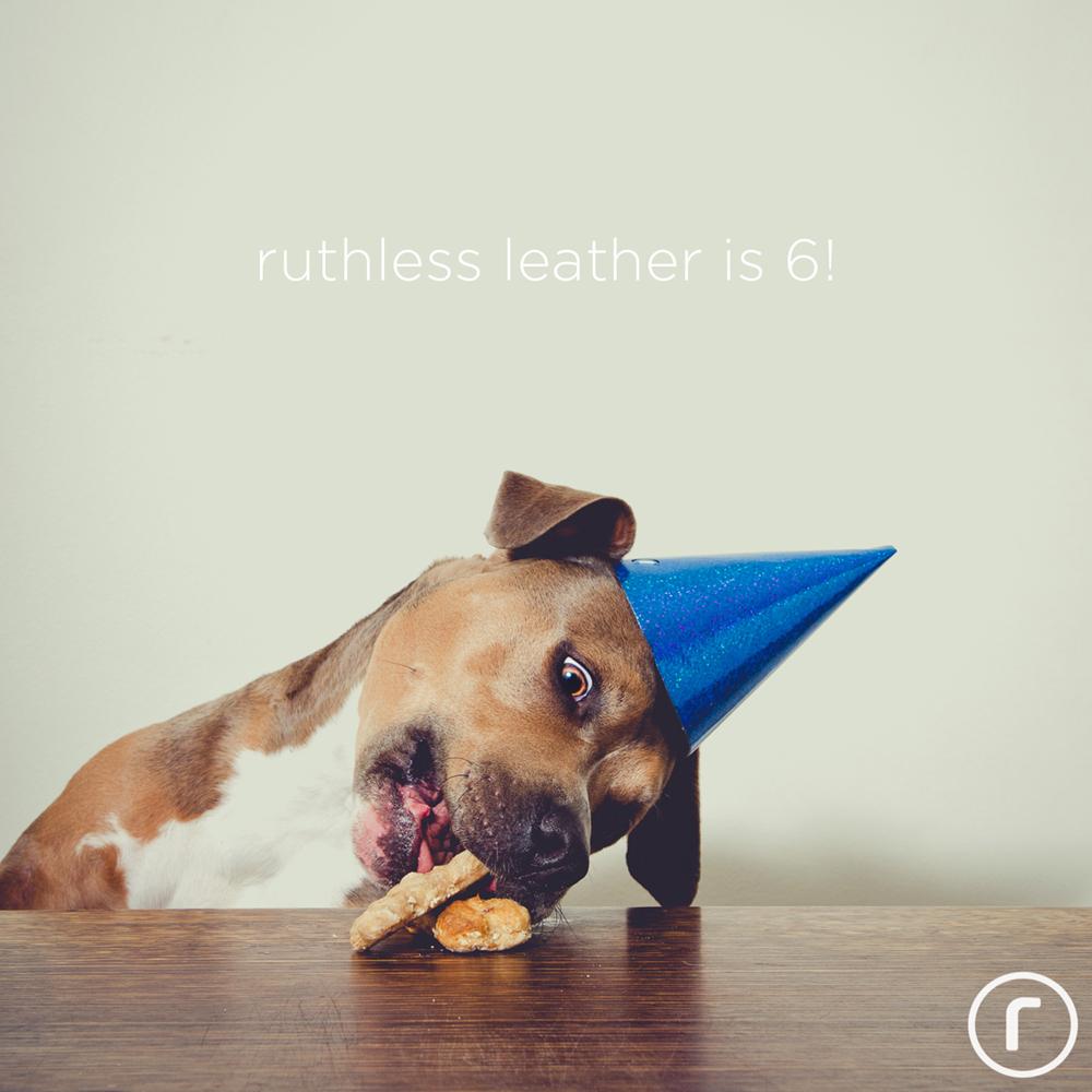dog birthday hat and cake